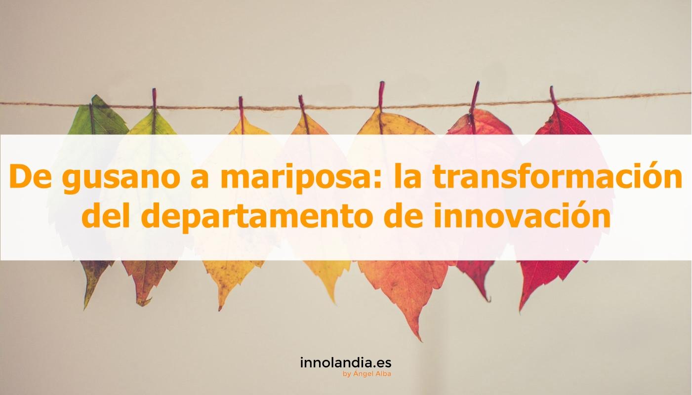 De gusano a mariposa: la transformación del departamento de innovación